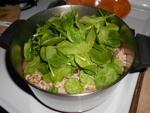 ...the baby spinach, the rest of the broth. Then I put the lid on & placed the whole thing in a 280 degree oven. That way, it was ready in a couple of hours when we wanted to eat it.